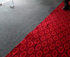 PictuRipped carpet